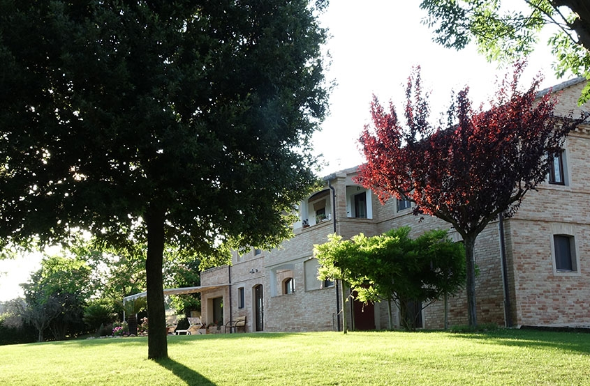 Poggio agli Ulivi country house - Fingerstyle guitar courses with Franco Morone in Marche