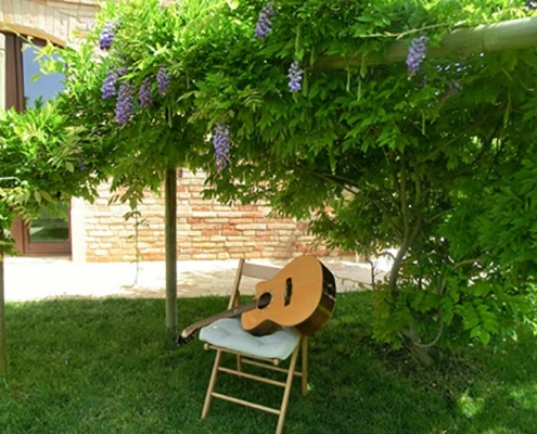 Wisteria and guitar
