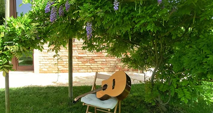 Wisteria and guitar - Finngerstyle guitar courses with Franco Morone in Marche region