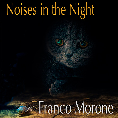 'NoisesInTheNight'_FrancoMoroneFingerstyleGuitar