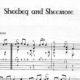 Franco Morone Sheebeg-and-Sheemore Music and tabs